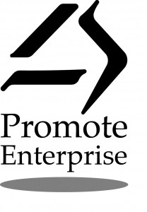 promote enterprise